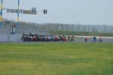 IMG_23100_ERC Pannonia 2013 Endurance