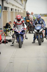 IMG_23177_ERC Pannonia 2013 Endurance